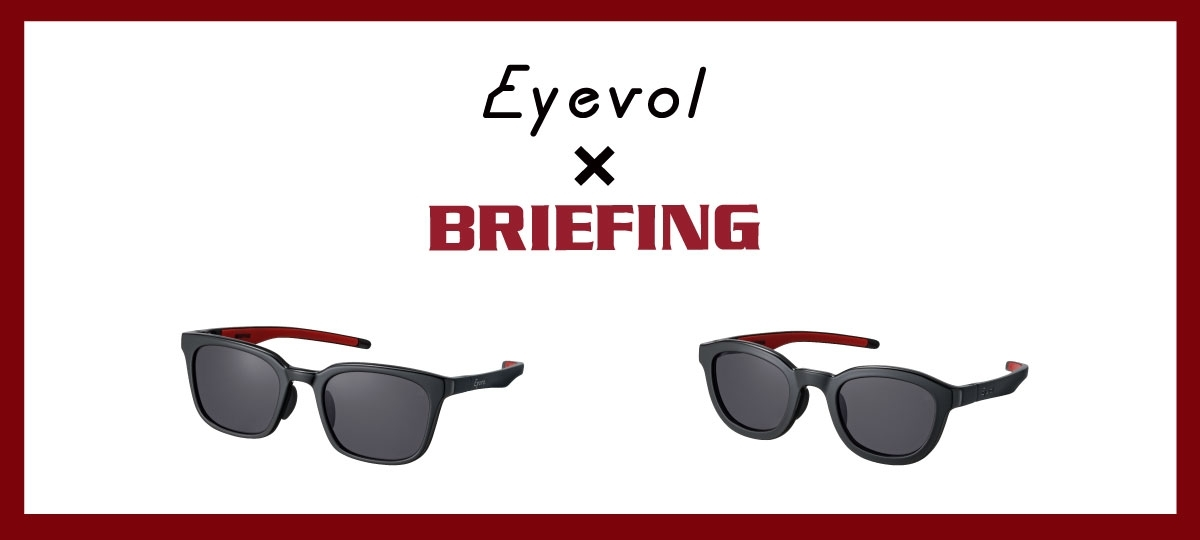 BRIEFING _eyevol